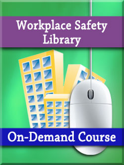 A Manager's Guide to Safety in the Workplace